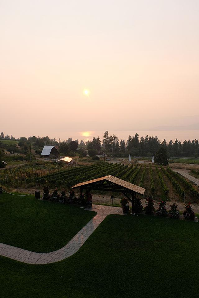 Summerhill Wine Estate